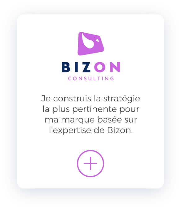 Bizon Consulting Mobile Slider