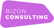 Bizon Consulting Logo